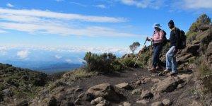 Kilimanjaro Alpine Service | Arusha, Tanzania