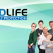 Forward Life Family Protection | Swansea
