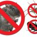 Vale Pest Control.gif